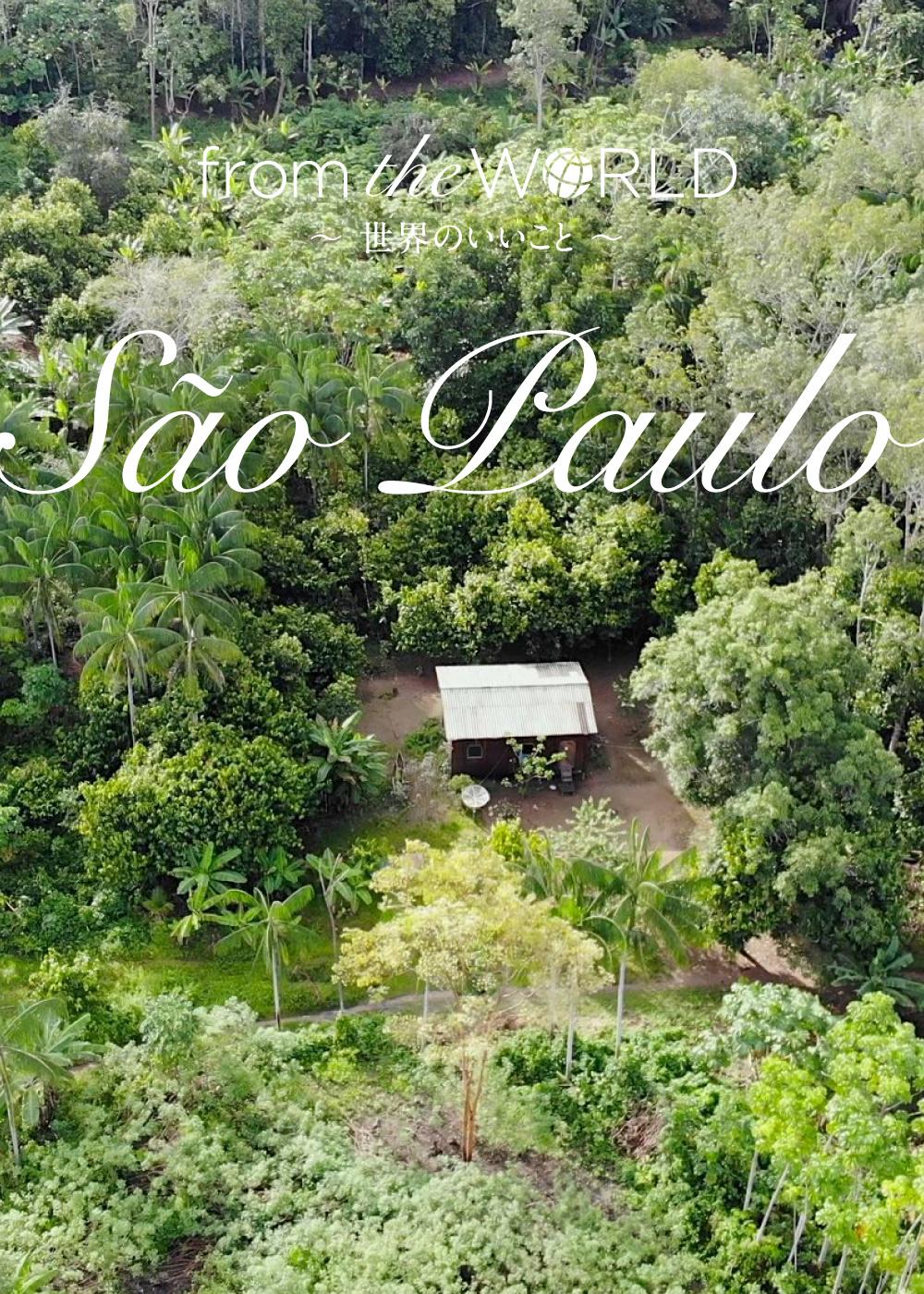 アマゾン熱帯雨林とのサステナブルな共栄をめざして